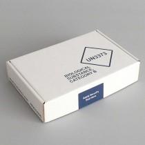 Box trasporto campioni 200G - UN3373 P650 Dim. 194x125x43mm